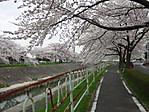 Kanaregawa